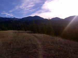 TrailRunRadium